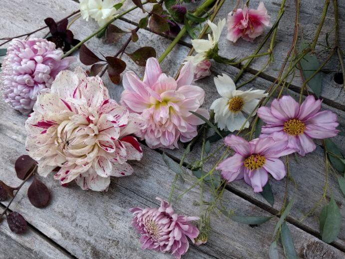 Camomile Cornflowers Autumn Flower Crown