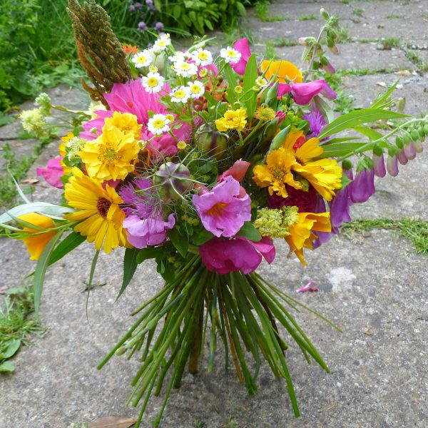 Camomile Cornflowers Bouquet Bright Summer