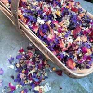 Camomile Cornflowers Trug of Confetti